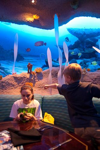 Nashville Aquarium Restaurant - Nashville Aquarium ...